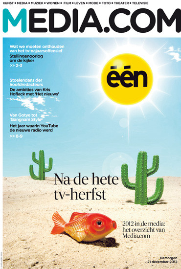vijselaarensixma cover illustratie Desert-Fish channel in Trouble 2012