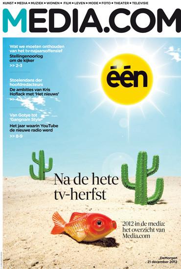 vijselaarensixma cover illustratie Desert-Fish channel in Trouble 2012